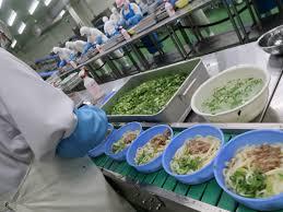 【茨城県稲敷郡-正社員】累計1億食突破!冷凍鍋焼きうどんの製造工場